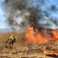Ready to burn: State agencies push prescribed burns, environmentalists advocate for development restrictions as number of massive wildfires increase