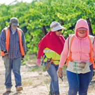 SLO County looks to remove hurdles for farmworker housing