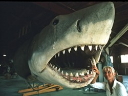FROM SLAYER TO ADVOCATE Pioneering female diver Valerie Taylor's story is captured in the National Geographic documentary Playing with Sharks: The Valerie Taylor Story. - PHOTO COURTESY OF WILDBEAR ENTERTAINMENT AND NATIONAL GEOGRAPHIC