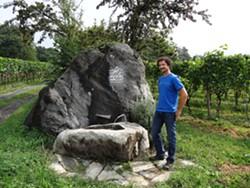 SWISS MISTER :  Matthias Gubler operates a winery in Maienfeld, Switzerland. - PHOTO BY DAN HARDESTY