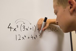 DIFFERENT MATH:  Local districts have the new sets of Common Core standards to teach, but are designing their own curriculum to get there. - PHOTO BY KAORI FUNAHASHI