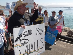 SURVEY THIS :  Los Osos resident Joey Racano (pictured, in black) led a hybrid whale appreciation/anti-seismic studies demonstration in Avila Beach on Sept. 1, before Pacific Gas & Electric is scheduled to begin its controversial geophysical surveys. - PHOTO BY DUSTIN HYMAN