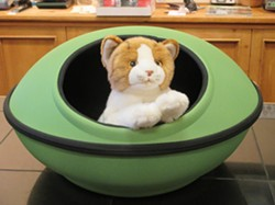 K&H MOD DREAM POD AT TAILS PET BOUTIQUE: - PHOTO BY TREVER DIAS