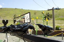 CROW BAR :  George Jercich's whimsical installation piece, pictured, is one of few site-specific pieces in the eighth annual Art Eco show at the SLO Botanical Garden. - PHOTO BY STEVE E. MILLER