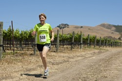 RUN FIRST, WINE AFTER :  Marian Fiorentino, organizer of the 20th annual Marianne Talley Fun Run, is hoping for a record 500 participants this year. - PHOTO BY STEVE E. MILLER