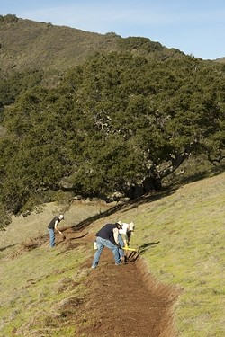 ON THE PATH :  Local park rangers are building a new public trail to connect the popular Johnson Ranch to city-owned open space in the Irish Hills. - PHOTO BY STEVE E. MILLER