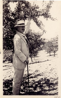 PADEREWSKI IN PASO:  The Polish pianist, composer, and politician Ignacy Jan Paderewski was also a pioneer of Paso Robles agriculture. In this rare photograph, Paderewski inspects the almond trees he planted on his Paso property. - PHOTO COURTESY OF THE POLISH MUSIC CENTER