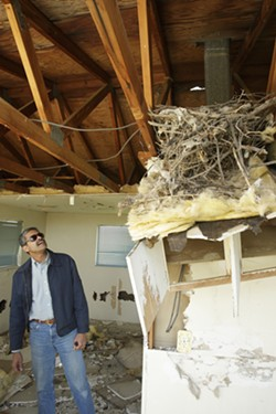 GUTTED :  County Code Enforcement Officer Art Trinidade scouts for squatters in an abandoned house in California Valley. - PHOTO BY STEVE E. MILLER
