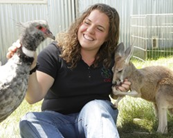 """FRIENDS :  Zoo to You curator Angela Boelk communes with """"Dennis Hopper"""", a red kangaroo, and """"Stanley Screamer"""", an Argentinian crested screamer. - PHOTO BY STEVE E. MILLER"""