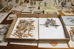"BIRDS OF A FEATHER :  Kroll organizes her cutouts meticulously, grouping ""birds with their mouths open"" separately from ""birds on twigs."""