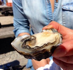 EAT UP!:  Ten chefs from across the Central Coast will go head-to-head for the Best Oyster of the Central Coast Chef Award. - PHOTO COURTESY OF THE CENTRAL COAST OYSTER & MUSIC FESTIVAL