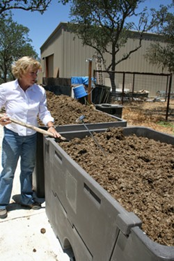 DIRTY DEEDS:  SLO County Worm Farm Owner Christy Christie checks the temperature of her compost bin, comprised of dairy cow manure and green waste. Once ready, the organic matter will become fodder for her beneficial worm population. - PHOTO BY HAYLEY THOMAS