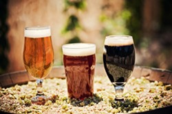POUR ME A COLD ONE, OR THREE:  Toro Creek Brewing Company's saison, amber ale, and oatmeal stout soak up a dose of Central Coast sun. The craft beer, comprised of organically grown hops and barley grown by three North County brothers, is  infiltrating taps across Paso Robles, Templeton, Atascadero, and Morro Bay. - PHOTO BY DUMMIT PHOTOGRAPHY