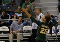 IN THE ZONE :  Caitlin Suttich serving at a Cal Poly women's volleyball match, before she left the team in 2009. - PHOTO COURTESY OF CAITLIN SUTTICH