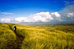 THE ROAD LESS TRAVELLED: - PHOTO BY CHRIS BURKARD