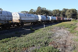 GET 'EM OUT:  About 100 idle rail cars have been sitting in Grover Beach for nearly a year, and city officials are concerned that they are a safety hazard. - PHOTO BY DYLAN HONEA-BAUMANN