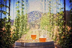 ROCK 'N' BREW:  Toro Creek Brewing Company will pour its amber ale and saison brews as Los Lobos rocks on at the upcoming Beaverstock music festival, slated for Sept 13-14 in Templeton. - PHOTO BY DUMMIT PHOTOGRAPHY