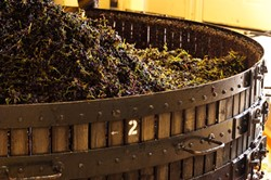 """STOP THE PRESSES:  Laetitia Vineyards and Winery uses a traditional labor-intensive """"Méthode Champenoise"""" method of sparkling wine production, just as Champagne makers do in Champagne, France. More proof of their dedication can be found in the winery's two coquard basket presses (pictured), the only pair of their kind in North America. - PHOTO COURTESY OF LAETITIA WINERY"""