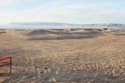 SAND STORM :  In response to a study linking off-road vehicle use to pollution on the Nipomo Mesa and elevated public health concerns, SLO County supervisors have urged the State Parks' Off-Highway Motor Vehicle Division to scrutinize the Oceano Dunes. - FILE PHOTO BY STEVE E. MILLER