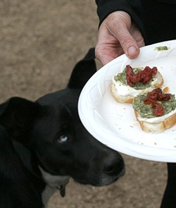 SHE'S GOT THE CRAZY EYE! :  Moon Leaf eyes a plate of hors d'oeuvres. - PHOTO BY GLEN STARKEY