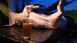 READY FOR RUBBING AND STUFFING:  The pig hangs out, ready to be prepped for roasting. - PHOTO BY GEORGE GRIFFIN AND GLEN STARKEY