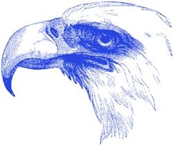 Opinion-Eagle0.jpg