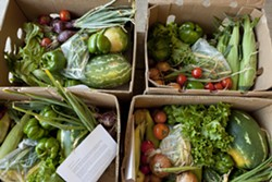HEALTHY CHOICES :  Boxes full of a variety of fresh seasonal produce were offered each week by the Cal Poly Organic Farm, until the program was unexpectedly halted in summer. - PHOTO BY STEVE E. MILLER