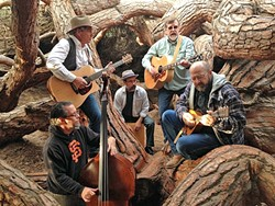 PETRIFIED TWINKIE:  Members of SLO grunge act Twinkie Defense have re-formed as Wood, a classy acoustic folk act with harmony vocals, playing D'Ambino's on July 17. - PHOTO COURTESY OF WOOD