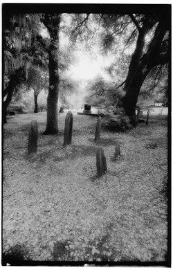 """""""CAMBRIA CEMETARY� HONORABLE MENTION OPEN BW: - MARCY A. ISRAEL"""