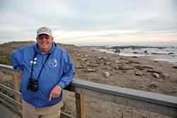 BEACH HEADS :  George Larson is one of many docents who put elephant seals in perspective for visitors from around the world. - PHOTO BY JESSE ACOSTA