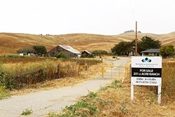 BARN OR SEWER?:  The city of Morro Bay is considering a handful of sites around the city to build a new wastewater treatment facility. At the top of the list is the Righetti Ranch, which has residents next to the property outraged. - PHOTO BY DYLAN HONEA-BAUMANN