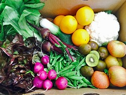 FARM TO HOME:  In its fourth year, Talley Farms Fresh Harvest delivers a variety of boxes of fresh fruits and vegetables to homes from Paso Robles to Orcutt. They'll soon be expanding into south Buellton, Santa Ynez, and Lompoc. - PHOTO COURTESY OF ANDREA CHAVEZ