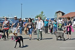 BARK FOR FUNDS:  Parks 4 Pups organizes a dog jog at Vina Robles annually to raise money in support of Sherwood Dog Park in Paso Robles. - PHOTO COURTESY OF PAULA O'FARRELL