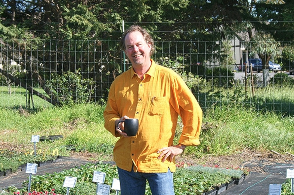 GROWING STRONG :  Growing Grounds Farm Program Manager Craig Wilson tends to greenery at the nonprofit's wholesale nursery located in San Luis Obispo off Orcutt Road. - PHOTO BY HAYLEY THOMAS CAIN