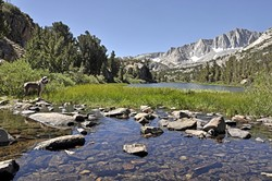 DEEP BREATH:  Long Lake stretches into the John Muir Wilderness on the east side of the Sierra Nevadas outside of Bishop. - PHOTO BY CAMILLIA LANHAM