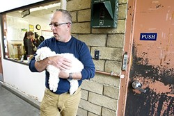 THE POUND:  Eric Anderson, director of county animal services, holds a dog in the animal shelter. SLO County recently approved funding to construct a new shelter adjacent to the Woods Humane Society shelter. - PHOTO BY JAYSON MELLOM