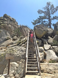 GOING DOWN A family of four walks down the stairs that lead up to Needles Lookout on the Giant Sequoia National Monument. Only four people are allowed up at a time, as the sign says. - PHOTO BY CAMILLIA LANHAM