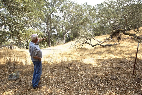 ROLLING WITH THE PUNCHES For the last 21 years, Red Heesch has lived on top of the hill where San Diego and San Dimas roads meet. Since 2006, he's followed Eagle Ranch, and is opposed to the annexation of the property into city limits. - PHOTO BY JAYSON MELLOM