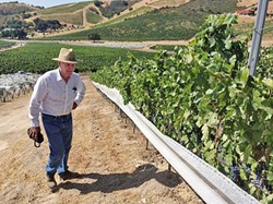 A RIVER RUNS THROUGH IT Well, it took five years and countless environmental agencies, but Parrish Family Vineyard owner/winemaker David Parrish has finally seen the slice of Adelaida Creek that runs through his west Paso Robles vineyard turn green. - PHOTO COURTESY OF PARRISH FAMILY VINEYARD