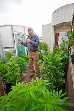 IN-HOME NURSERY Charlie Doster, owner of SLO Cloning, stands among cannabis plants that outgrew his Los Osos nursery. Doster runs a cloning business out of his garage but is seeking a new location. - PHOTO BY JAYSON MELLOM