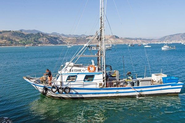 CATCH OF THE DAY Crab and salmon boat Eagle arrives in Port San Luis with a load of rock crab and conch. - PHOTO BY JAYSON MELLOM
