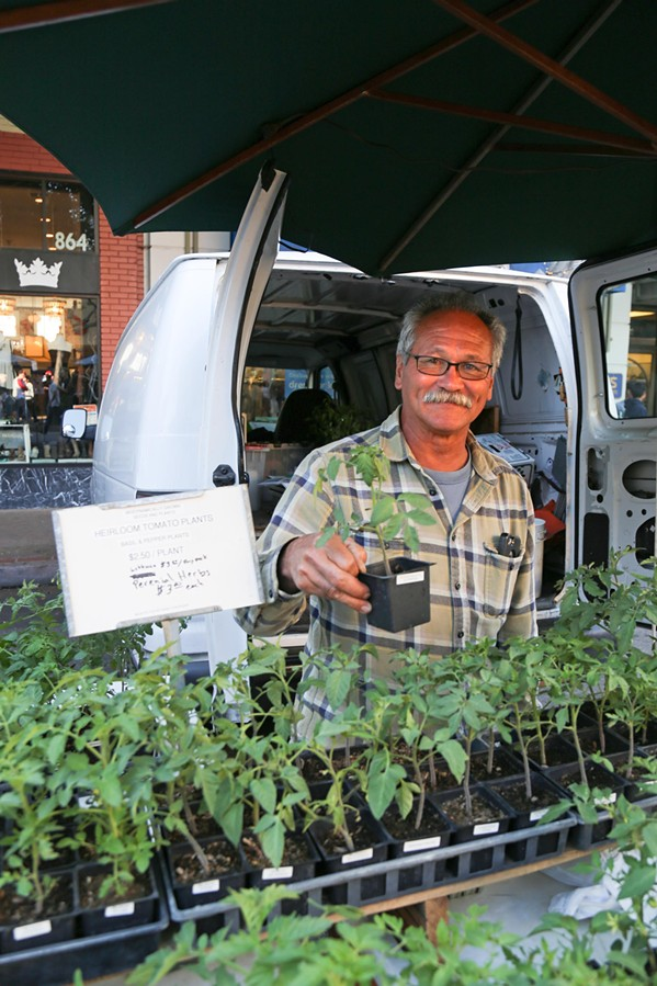 GREEN THUMB Farmer Ralph Johnson gabs with the crowd as he sells produce and plants at the Downtown SLO Thursday night farmers' market. His greenery has been tucked into plates at Gardens of Avila, Honeymoon Cafe in Pismo Beach, and Wild Ginger in Cambria, among other local hot spots. Restaurants and chefs rely on local farmers' markets just as much as area families. - PHOTO BY HAYLEY THOMAS CAIN
