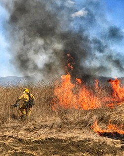 ON FIRE SLO County let a fire that broke out this summer burn to 250 acres because a prescribed burn was planned for the same area later in the week. - PHOTO COURTESY OF SLO COUNTY CAL FIRE