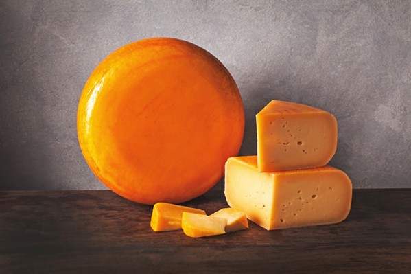 AWARD-WINNER Cal Poly's Grand Gouda took third in the U.S. Cheese Championship Contest this past March. It's a big deal, Creamery Operations Manager Thomas Johnson says, because the student-crafted cheese went up against commercial creameries rather than other colleges. - PHOTO COURTESY OF CAL POLY