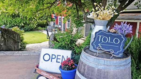 WARM WELCOME Tolo Cellars, located far out in northwestern Paso Robles, off of Adelaida Road, has been one of my family's favorite picnic spots for more than a decade. - PHOTOS BY ANDREA ROOKS