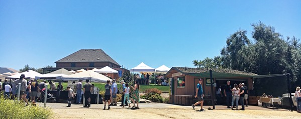 OPEN FOR BUSINESS On opening day, June 29, Talley Farms brought out their yellow bins of in-season, organic fruits and veggies straight from the farm for sale, as local vendors joined in the fun and people picnicked on the grass with live music by The Catalina Eddy Four. - PHOTO BY BETH GIUFFRE