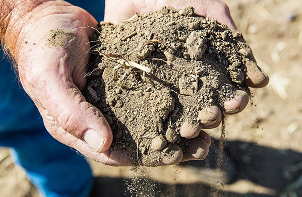 FALLOWED San Miguel farmer Robert Galbraith cups a handful of soil from his 280-acre property. Because of pumping restrictions in the Paso Robles Groundwater Basin, Galbraith can't farm like his family has for decades. - FILE PHOTO BY JAYSON MELLOM
