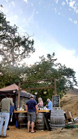 GOOD GROG Since the stage is set at Filipponi Ranch's property, the SLO winery offers its wines by the glass and the bottle for Shakespeare Festival patrons. - PHOTOS BY ANDREA ROOKS