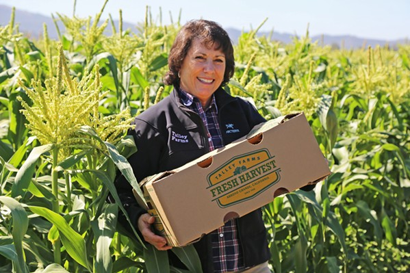 CSA BOXES SOAR Andrea Chavez, of Talley Farms, holds one of their popular farm boxes. Their produce boxes have been in demand since the pandemic, as many local farms have seen increases in subscribers since mid March's countywide and statewide shelter-in-place announcements. - PHOTO COURTESY OF ANDREA CHAVEZ