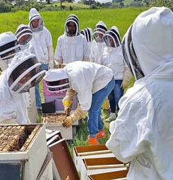 BEE SCHOOL In addition to running CBC, beekeeper Jeremy Rose co-teaches beekeeping at Cal Poly. The program has been running since the 1950s, with more than 100 hives and its very own honey room. - PHOTO COURTESY OF CBC